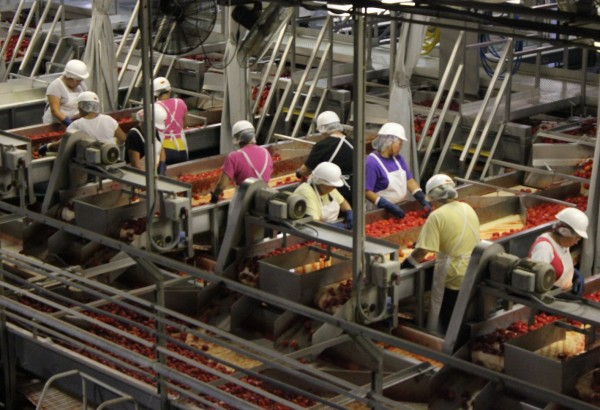 Workers at the Morningstar tomato processing plant in Los Banos, California - featured as part of a great Deconstructing Dinner webisode.